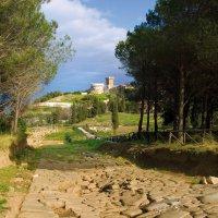 Parco-archeologico-di-Baratti-e-Populonia---Acropoli-di-Populonia